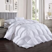 All Season Ultra-Soft Down Comforter 10% Down 90% Feather Duvet Insert with Tabs