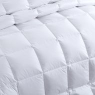 Ultra-Soft Luxury 1800 Series Queen Size Down Comforter Duvet Insert with Tabs